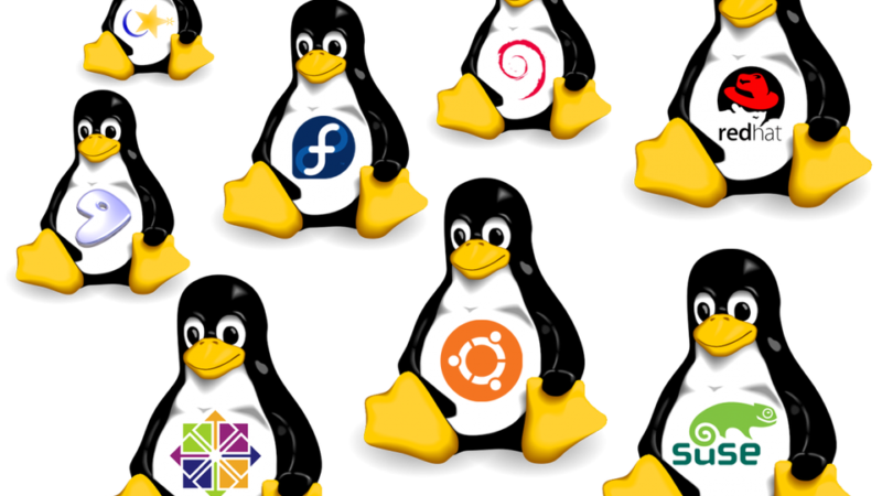 How to choose the Linux distribution that suits your needs ?